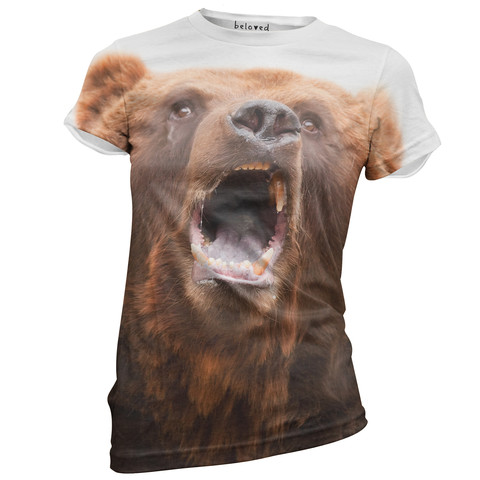 Bear_large